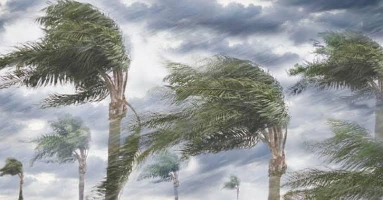 Warga Bali Waspadai Angin Kencang
