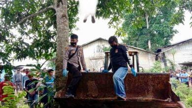 Photo of FT Ditemukan Tergantung di Pohon Mangga
