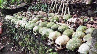 Photo of Wisata Pemakaman
